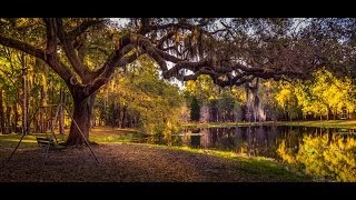 Download Landscape Photography Composition - PLP #106 by Serge Ramelli Video