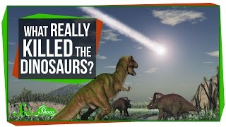 Download What Really Killed the Dinosaurs? Video