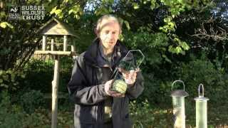 Download Bird Feeding Tips: food and feeders Video