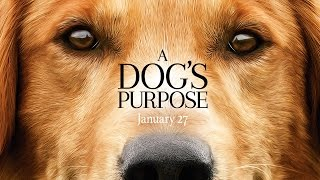 Download A Dog's Purpose - Official Trailer (HD) Video