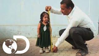 Download A menor mulher do mundo | Meu Corpo, Meu Desafio l Discovery Brasil Video