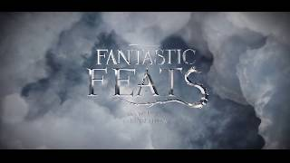 Download Fantastic Feats at UChicago Video