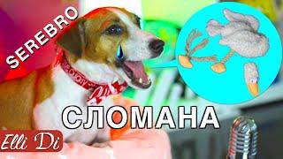 Download SEREBRO - СЛОМАНА утка   СОБАКА ДЖИНА ПОЁТ   Elli Di Собаки Video