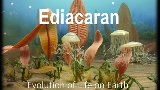 Download The Evolution of Life part 1 : Ediacaran Video