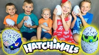 Download HATCHIMALS || Magical Surprise Animals Hatch from GIANT EGGS!! Video
