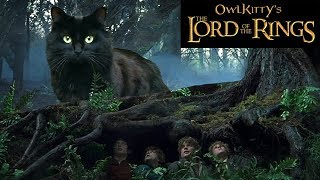 Download Lord of the Rings + My Cat Video