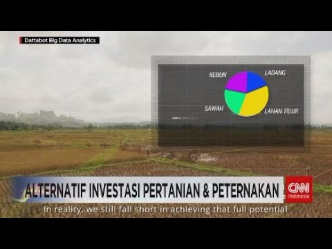 Alternatif Investasi Pertanian & Peternakan