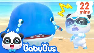 Download Baby Whale Got Injured | Super Panda Rescue Team | Panda Cartoon | Kids Song | BabyBus Video