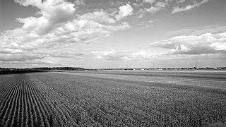 Download Les agriculteurs prennent leur destin en main - 1er octobre 1924 Video