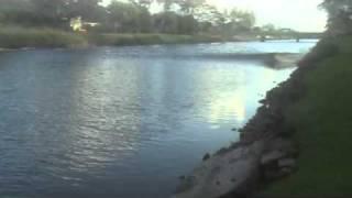 Download Hawaii Tsunami - From my backyard - Best Shot Yet! - Kailua, Oahu Video