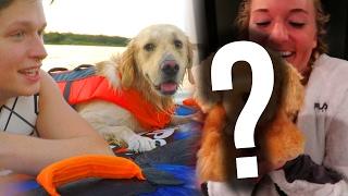Download DOG GOES TUBING + BIG SURPRISE! (Super Cooper Sunday #87) Video