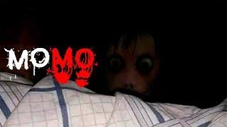 Download Momo Video