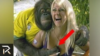 Download 10 Most Inappropriate Animal Encounters! Video