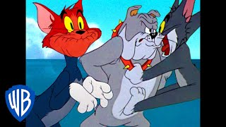 Download Tom & Jerry | Tom's Screams! | Classic Cartoon Compilation | WB Kids Video