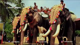 Download Thechikottukavu Ramachandran king of elephants: subtitles:ഏകഛത്രാധിപതി തെച്ചിക്കോട്ടുകാവ് രാമചന്ദ്രൻ Video