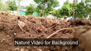 Download Agriculture Land video for Background HD Video