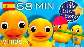 Download Seis patitos | Y muchas más canciones infantiles | ¡LittleBabyBum! Video