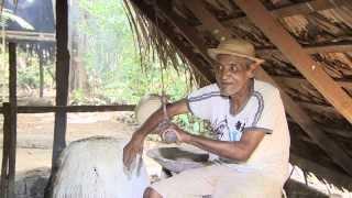 Download VIAGENS PELA AMAZÔNIA - Apogeu e Queda da Borracha na Amazônia - Parte 2 Video