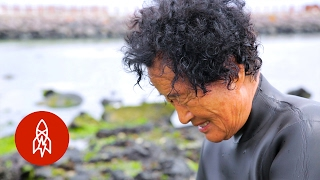 Download The Last Mermaids of Jeju Video