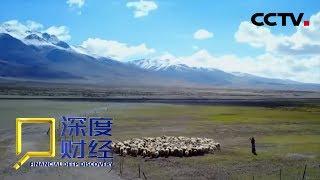 Download 《深度财经》 改革再出发:打赢蓝天保卫战 20190105 | CCTV财经 Video