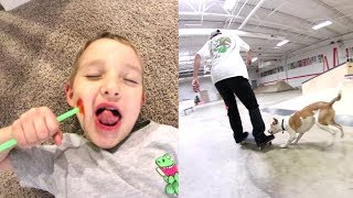 Download FATHER SON PLAY TIME! / Dog At The Skatepark! Video