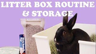 Download Rabbit Litter Box Set-Up & Routine Video
