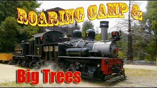 Download Roaring Camp and Big Trees Railroad Video