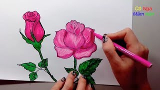 Download Hướng dẫn vẽ hoa hồng đơn giản- How to draw a rose - How to Draw + Color a Rose Super EASY Realistic Video
