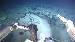 Download Primeiras imagens do fundo do Oceano Atlântico Sul são divulgadas Video
