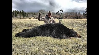 Download Spot and Stalk- Giant Black Bear with John Dudley Video