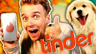 Download GETTING A GIRLFRIEND AS A DOG Video