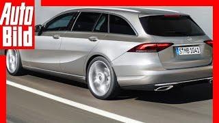 Download Zukunftsaussicht: Mercedes C-Klasse T-Modell (2021) Details / Erklärung Video