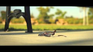 Download Faith | a short film Video