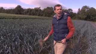 Download Moyleabbey 5 Acre Farmer Video