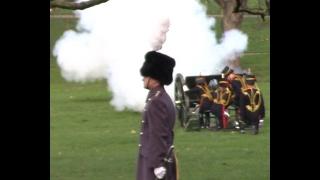 Download HM's Blue Sapphire Jubilee: 41 Gun Salute in Green Park, King's Troop Royal Horse Artillery Video