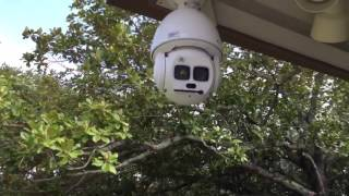 Download Starlight Laser PTZ Dome Camera Video