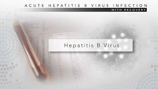 Download Hepatitis B: CDC Viral Hepatitis Serology Training Video