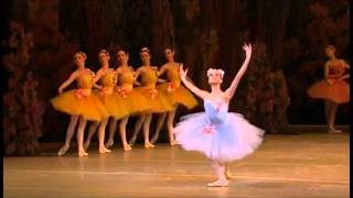 Download 23 Wonderful Female Classical Ballet Variations Video
