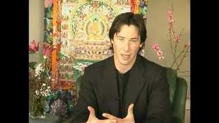 Download Discovering Buddhism Module 7 - Refuge in the three Jewels Video