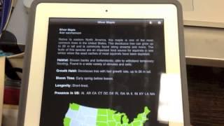 Download Leafsnap (week 3) Video