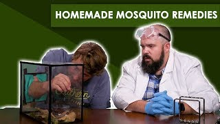 Download Grandma's Mosquito Remedies - Bless Your Rank Video