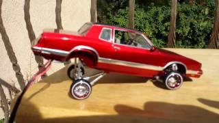 Download 86 Chevy Monte Carlo Ls lowrider model car hopper Video