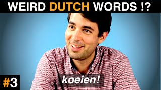 Download These DUTCH WORDS sound FUNNY in other languages! Video