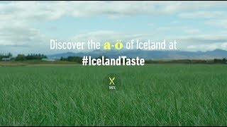 Download The A-Ö of Iceland | TASTE Video