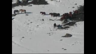 Download U.H -Turan Engin- Uryan Geldim Uryan Giderim Video