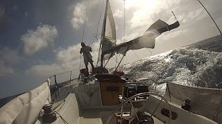 Download ″Alone Together″: Singlehanded Sailing, LA to Hawaii and Return. Video
