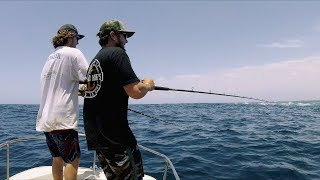 Download Bluefin Tuna Foamers Video