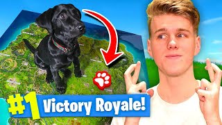 Download Using A PUPPY To WIN FORTNITE Battle Royale! Video