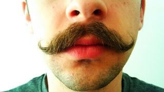 Download Mustache Growth Time Lapse Video
