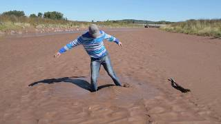 Download Example of Liquefaction 2 Video